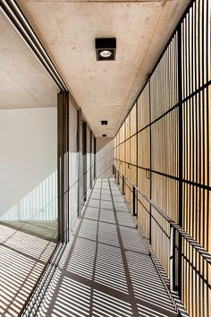 Image 4 of 29 from gallery of Pedro House / VDV ARQ. Photograph by Curro Palacios Taberner