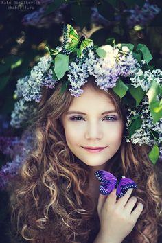 lilac fairy - null