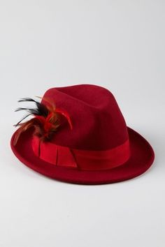 Red fedora w/feather Trilby Hat, Shades Of Red, Hats For Women, Lady In Red, Fashion Accessories, Feather, Homburg, Drum Major, Women's Hats