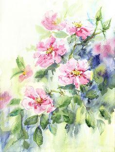 Róże -  Maria Roszkowska WATERCOLOUR