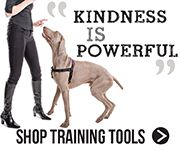 Positively Training Tools