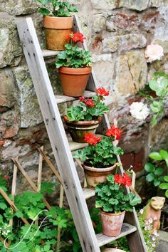 Gestalten Sie den Garten kreativ mit diesen 65 DIY-Ideen Create the garden creatively with these 65 Outdoor Planters, Outdoor Gardens, Micro Garden, Vegetable Garden Tips, Diy Garden Decor, Outdoor Garden Decor, Cool Plants, Potted Plants, Garden Projects