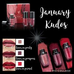 These are the colors for the new lip product. From powder to cream, non-transferable (won't stain your coffee cup 😀❤💋) silky smooth and weightless on your lips!! SUPER PRETTY! All 3 are in this month's Kudos for $60.00! https://www.youniqueproducts.com/AngieTrombi1/party/8634079/view