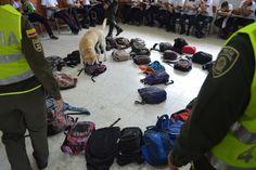 Policía nacional realiza actividades de control denominados plan colegios…