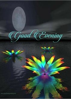 Good Evening Messages, Good Evening Greetings, Wisdom Scripture, Words Of Encouragement, Good Night Moon, Good Night Image, Morning Greetings Quotes, Morning Sayings, Evening Quotes