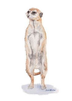 Meerkat watercolor giclée reproduction. Portrait/vertical orientation. Printed on fine art paper using archival pigment inks. This quality printing allows over 100 years of vivid color in a typical ho