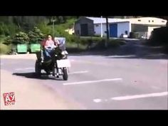 Funny Horse Cart   World Wide Funny Videos