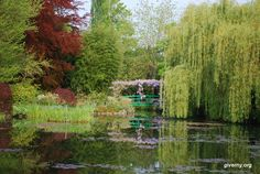 Claude Monet based much of his work on  this water lily pond in the Garden at Giverny, France - Photo Ariane Cauderlier