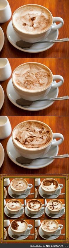 ''Cats always be getting into my latte...''
