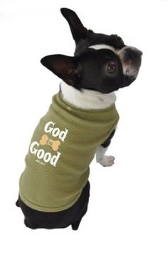 Amazon.com: Ruff Ruff and Meow Dog Tank Top, God is Good, Green, Extra-Small: Pet Supplies