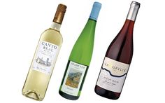 Wine Review: What to serve with egg dishes - Telegraph