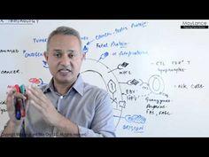 Immunology Lecture 18 Tumor Immunity - YouTube