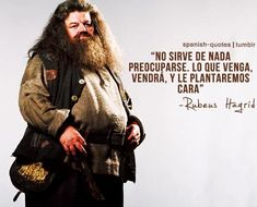 ... Lo que venga vendrá... #Hagrid #Harry Potter