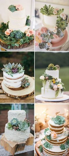 Succulent wedding cake rustic 26 ideas for 2019 - cake decorating - Wedding Cakes Trendy Wedding, Boho Wedding, Perfect Wedding, Wedding Flowers, Dream Wedding, Wedding Day, Wedding Wishes, Succulant Wedding, Elegant Wedding
