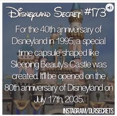 Now I know when I'm going to disneyland! Disneyland Secrets, Disney Secrets, Disney Tips, Disney Memes, Disney Quotes, Disneyland Hacks, Disney Trivia, Disney Magic, Disney Dream