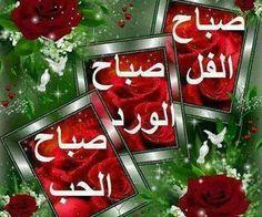 صباح الفل والورد والحب