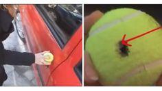 Watch How She Unlocks a Car Door With a Tennis Ball - PositiveMed