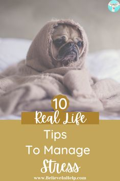 Learning to manage stress is imperative. Here are 10 real life tips to manage stress. Stress Management | Stress Quotes | Stress Quotes Life | Managing Stress | Habits | Goals | Real Life | Tips