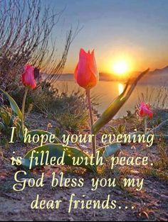 50 Lovely Good Evening Quotes and Wishes Evening Good Night I Love You, Good Night Friends, Good Night Sweet Dreams, Good Night Image, Good Morning Good Night, Special Friends, Night Time, Good Evening Messages, Good Evening Wishes