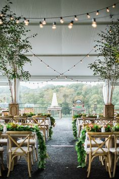 Tented Reception with String Lights and Birch Tree Planters