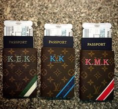 Passport holder- Louis Vuitton