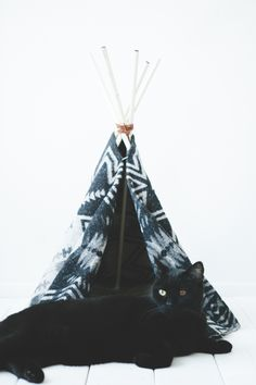 Black Cat with Teepee