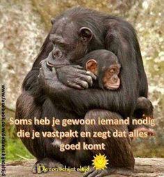 .aap met jong