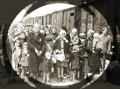 Holocaust Death Camp | Auschwitz and Hamas Auschwitz Death Camp3 – Solid Principles