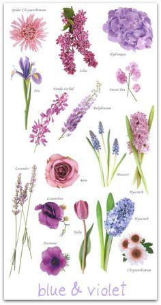 Flores tons roxos, lilas