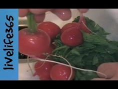 How to...Eat Radishes - YouTube