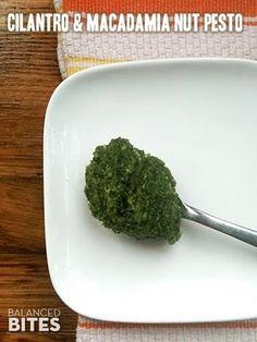 Easy Recipe: Cilantro  Macadamia Nut Pesto | Balanced Bites | Holistic  Paleo Nutrition Education