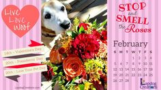 Live Love Woof... it's February and Lapdog Creations has created this free #calendar to share with you. #DesktopCalendar #February ©️️️LapdogCreations Dog Mom | Desktop Calendar | February | Dog Products | Rescue Dog | Free Calendar | Live Love Bark | Pet Lovers