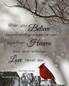 When you believe beyond what your eyes can see signs from heaven show up to remind you love never dies. When You Believe, Life Quotes Love, Me Quotes, Bird Quotes, Death Quotes, Loss Of A Loved One Quotes, Butterfly Quotes, Loss Quotes, Family Quotes