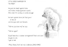 A Poem and Illustration from Mary Oliver's Dog Songs