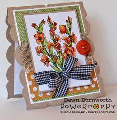 Power Poppy Day 2 Gladioli