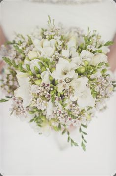 Freesia - image via our labor of love by heidi - on Botanical Brouhaha