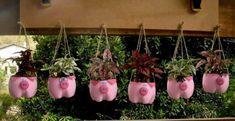Kunststoffflaschen eignen sich bestens für den Einsatz im Garten… 12 brillante Ideen!