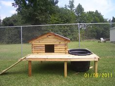 duck coop with attached deck and swimming pool. Would work well inside our no-longer-in-use dog pen. Photo at end shows dog pen with ducks