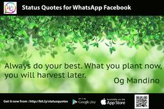 Always do your best. What you plant now, you will harvest latter. - Og Mandino