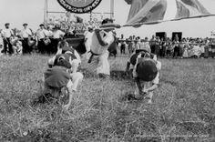 Concurso de paellas en Aixerrota, 22 de julio 1984 (Cedida por Itxas Argia) (ref. 07362)