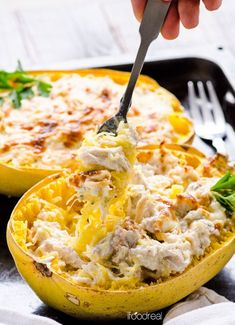 Greek Yogurt Chicken Alfredo Spaghetti Squash Boats made with Greek Yogurt.