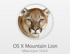 Apple's Mac OS X 10.8.5 update, the last one for Mountain Lion... before the new Mavericks OS X 10.9