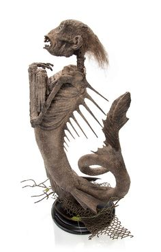 Feejee mermaid sculpture available from The Evolution Store. More weird and amazing things you can buy online right now: http://www.cultofweird.com/blog/oddities-for-sale/
