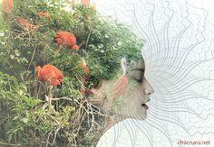 Ayahuasca Mother