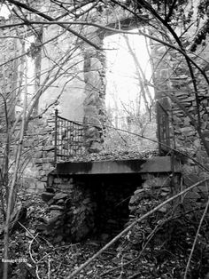 Abandoned ruins of the front of old stone home in over growth 1 mile off Butler Pike in Plymouth Meeting, PA   12-22-12- Photo:L.Ramage'