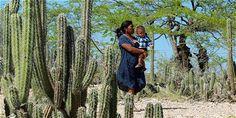 Bahía Portete (Guajira) es Parque Nacional Natural - Ciencia - ELTIEMPO.COM - desierto de la Guajira