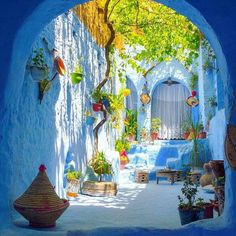 The Blue Pearl 🦋 Chefchaouen, Morocco. Photo by Tag someone you would share this trip with 💙 Pinterest Foto, Moroccan Garden, Moroccan Style, Morocco Travel, Outdoor Gardens, Outdoor Living, Beautiful Places, Beautiful Streets, Scenery