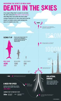 Here is an infographic depicting the Mega Shark attacks the airplane in the sky and destroys it in the movie.
