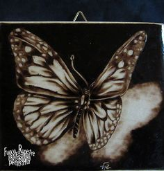 *Butterfly* *Pirografia su Acero* *Pyrography on Maple Wood*