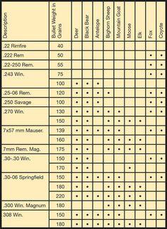 Bullet Weight And Caliber